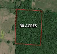 30+ Wooded Acres