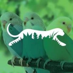 Family Admission Pkg (4 one day tickets) Donor: Mesker Zoo Value $38