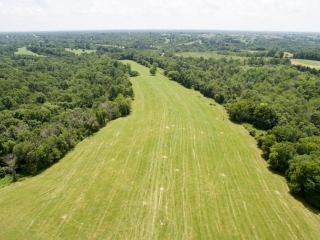 Parcel 2:  124+/- acres of fenced land