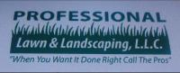 Lawn Care Package from Professional Lawn and Landscaping, LLC