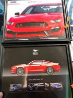 2015 Mustang GT photo, Mustang Shelby photo