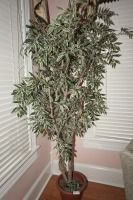 PLANTER AND LARGE FAUX FICUS TREE - USBR2