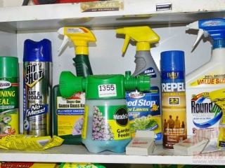 Round-Up Bug Spray & More.
