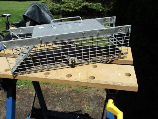 Small Live animal trap