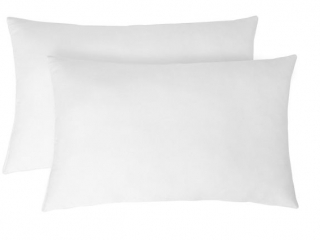 2-PIECE STANDARD SIZED PILLOW SET
