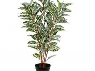 ARTIFICIAL REAL ZEBRA TOUCH TREE IN POT