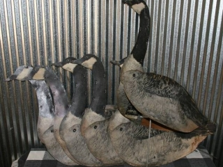 Antique Goose Decoys