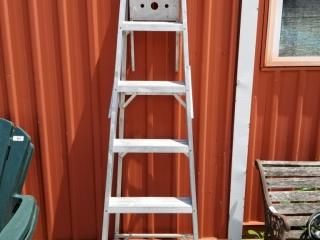 6ft Ladder