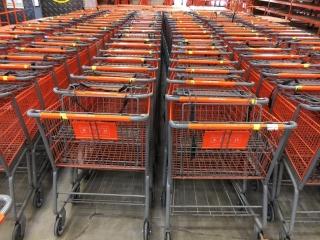 Technibilt shopping carts