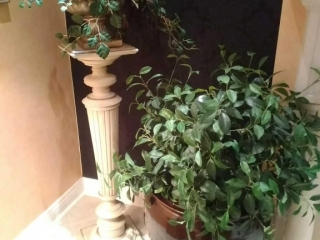 Large planter pot on stand