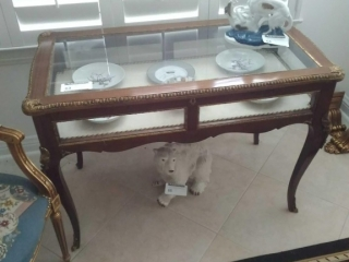 Louis Quinze Style Vitrine Table Continental,