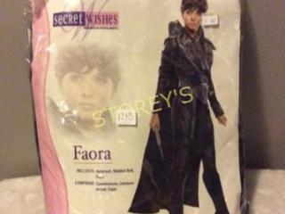 Secret Wishes Faora War of Steel Costume