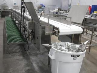 """Cone Deboning Line, KVP Plastic Conveyor 24"""" X 33"""