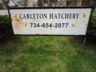 REAL ESTATE & MORE - The Carleton Hatchery