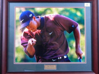 Tiger Woods; 2000 PGA Champion