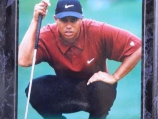 "Tiger Woods; Photo under acrylic; 10"" x 13"""