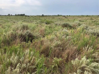 Tract 1- 160+ Acres of Native Grassland