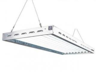 DOUBLELUX T5 FLUORESCENT 4FT 8 LAMPS GROW