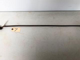 Gentleman's Walking Stick