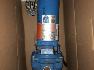 Goulds 1 HP pump (broken fins)