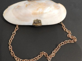 Ladies oyster shell change carrier