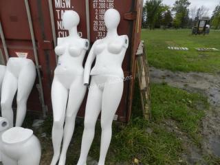 (2) Mannequin's