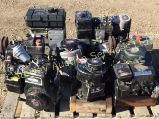 Briggs &Stratton motors