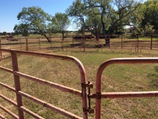 CATTLE PEN WITH 15 PANELS AND A GATE