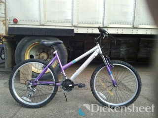 Magna bicycle w/Shimano Revoshift 7 speed