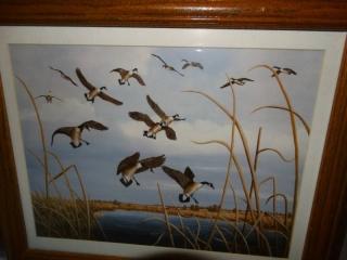 Lot of framed art.