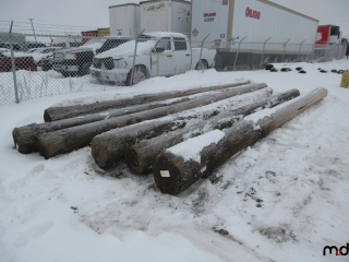 6 Power Poles (Up to 21' Long) UNRESERVED
