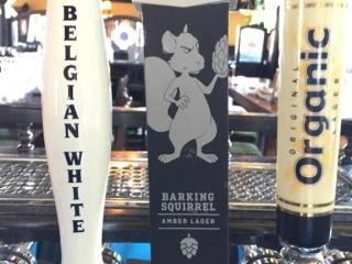 Hop City Brewing Co  Beer Tap Handle