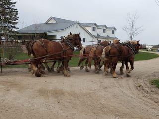 Bontrager Farm Auction