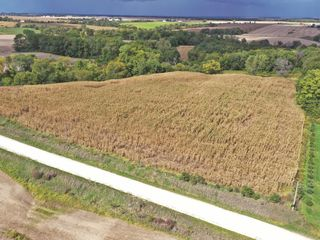 Tract-2---12-Acres-M-L---Subject-to-Survey_1.JPG