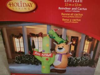 Inflatable Reindeer and Cactus