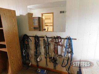 Assorted Horse Tack Mirror 2 jpg
