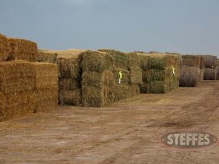 02 Hay & Forage (Litchfield, MN) 6_11_13 197.JPG