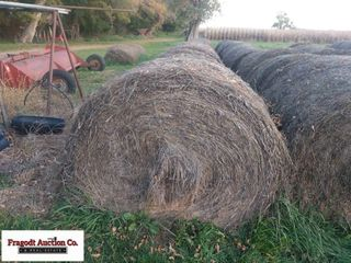 20 Bales of 1st Cutting Alfalfa Baled with New Hol