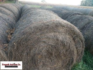 18 Bales of 2nd Cutting Alfalfa Baled with New Hol