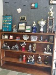 Assorted display trophies