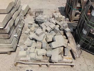 Assorted Paver Pieces