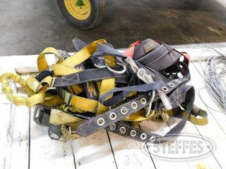 Safety-Harnesses_1.jpg