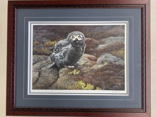 liz lesparance 1989 lTD Edition  Owl Chick