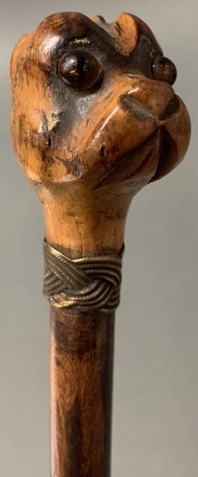 Rare Dog with Silver Collar Walking Stick