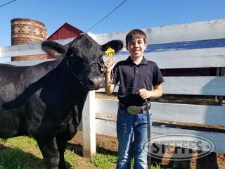Matthew-Heiniger--Market-Beef--Steer-_1.jpg
