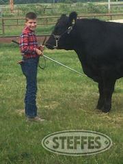 Logan-Wooldridge--Market-Beef--Steer-_1.jpg