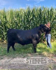 Hailey-Wick--Market-Beef--Heifer_1.jpg