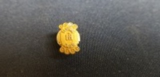 International Harvester Century Club pin