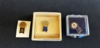 International Harvester (3)-Blue Ribbon Service pins