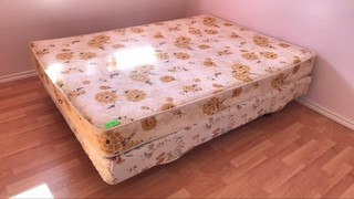 Mattress and box spring 53x75 inch mounted on 2x4